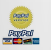 Paypal Secure Payment for Rugby Tickets