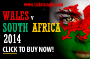 Wales v South Africa 2014 Rugby Tickets